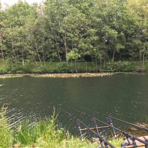 The Half Round Ponds